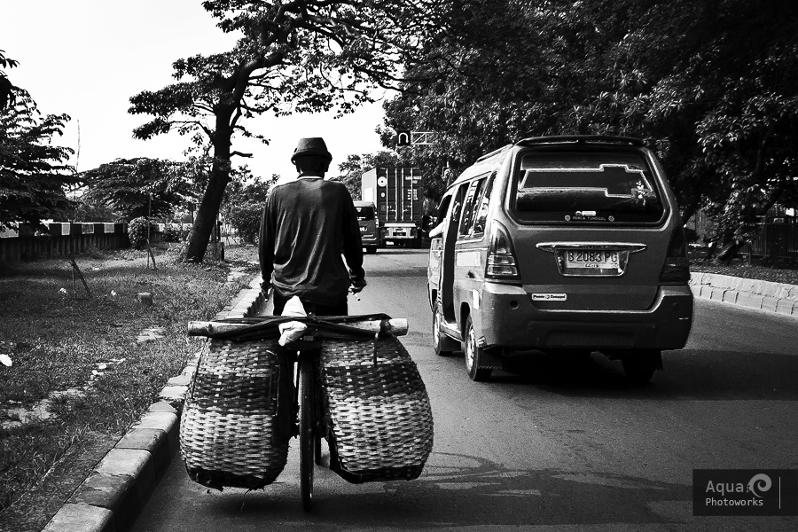 On Bicycle with Baskets